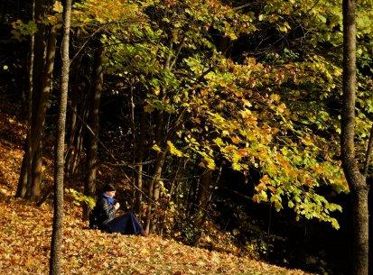 Días de otoño